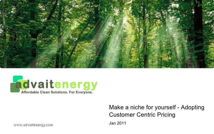Make a niche for yourself - Adopting Customer Centric Pricing Jan 2011 advait energy Affordable Clean Solutions. For Every...