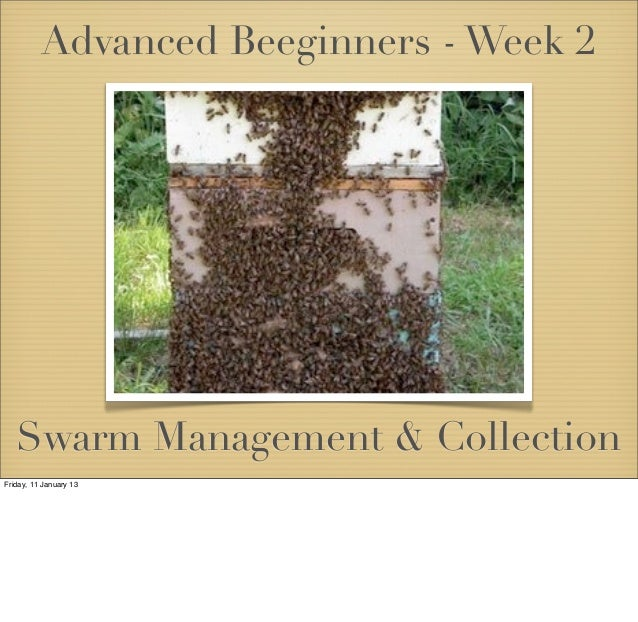 Advanced Beeginners - Week 2   Swarm Management & CollectionFriday, 11 January 13