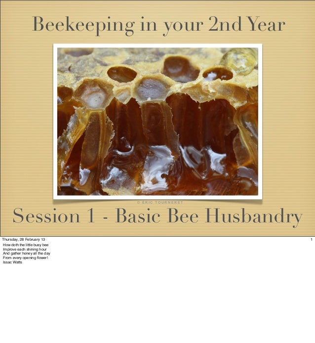 Beekeeping in your 2nd Year                               © ÉRIC TOURNERET     Session 1 - Basic Bee HusbandryThursday, 28...