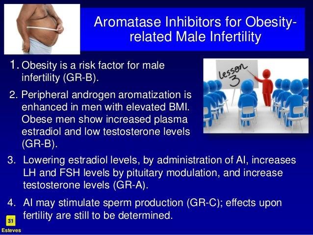 exogenous testosterone steroids