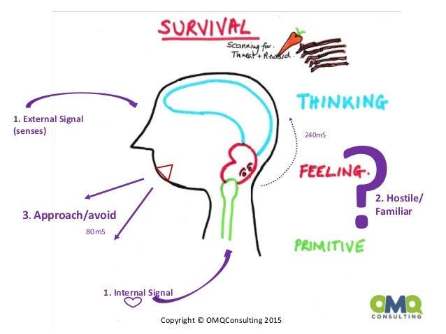 Advances in brain research by carol osterweil