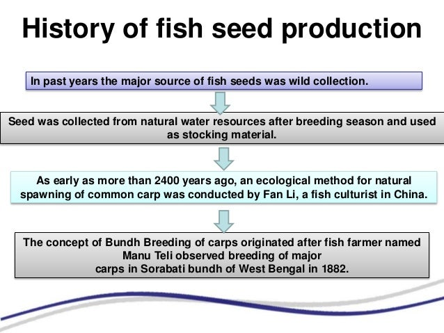 Collection Of Fish Seed From Natural Resources