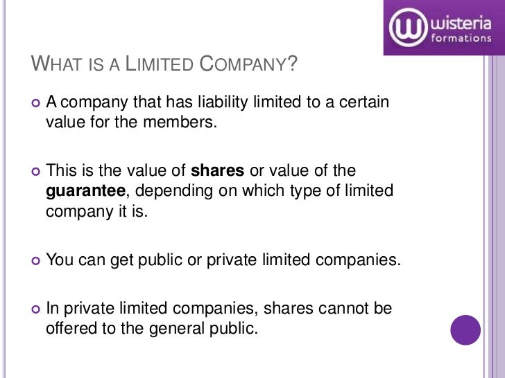 public limited company advantages and disadvantages pdf