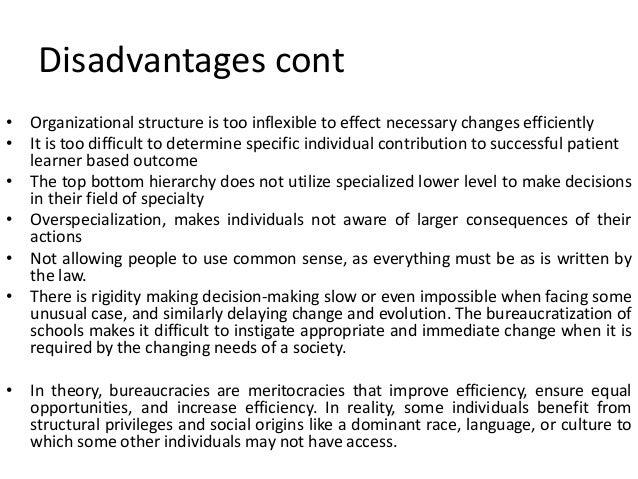 limitations of bureaucratic theory