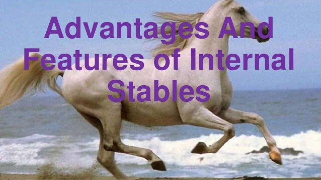 Advantages And Features of Internal Stables