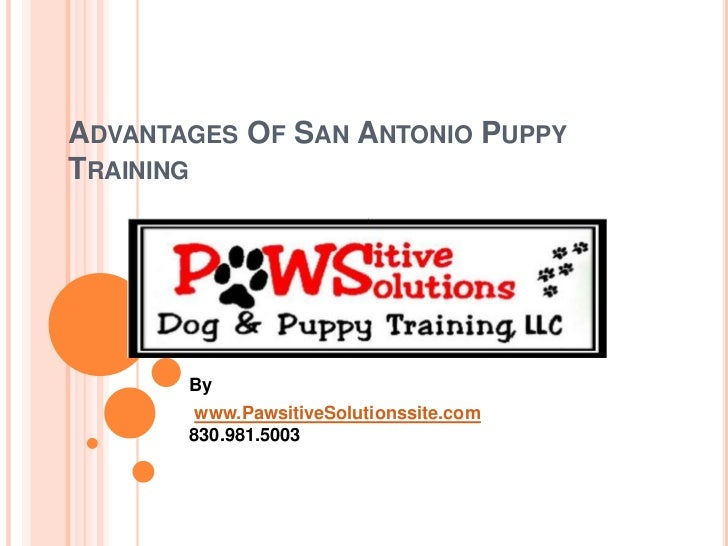 Advantages Of San Antonio Puppy Training<br />By<br />www.PawsitiveSolutionssite.com830.981.5003<br />