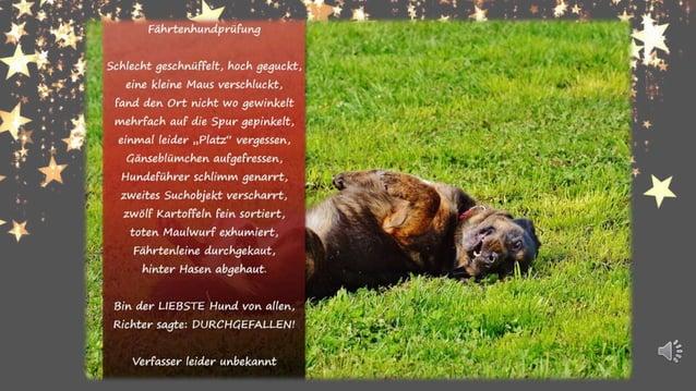 Glück ist…seinen Hund zu umarmen und die Nase in sein Fell zu kuscheln. Glück ist…neben seinem Hund im Gras zu liegen und ...