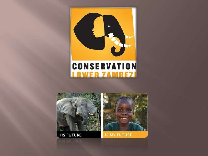 Conservation Lower Zambezi is a Zambian non-governmental organisation    committed to the conservation and  sustainable us...