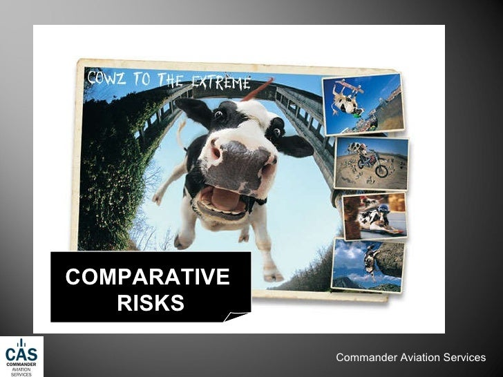 COMPARATIVE  RISKS