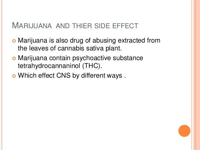 Cannabis Breeding and Genetics