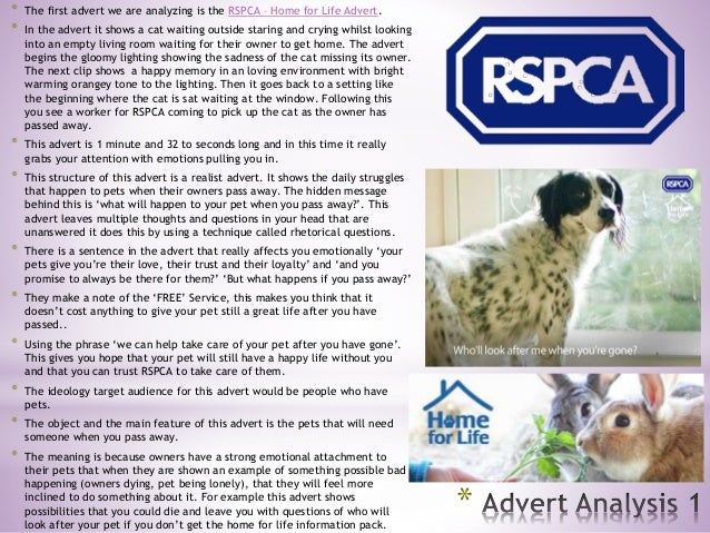 * * The first advert we are analyzing is the RSPCA – Home for Life Advert. * In the advert it shows a cat waiting outside ...
