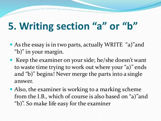 Essay writing in ib exams