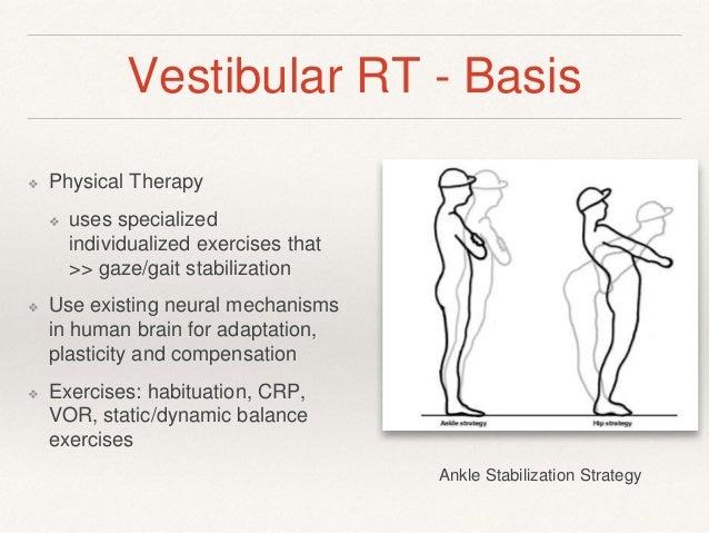 Advanced Rehabilitation in Otology