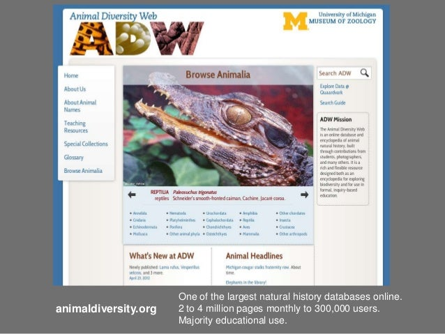 One of the largest natural history databases online.animaldiversity.org   2 to 4 million pages monthly to 300,000 users.  ...
