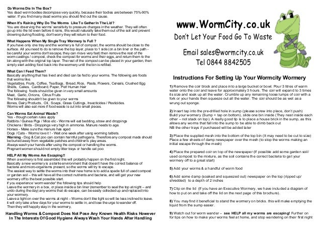 Instructions For Setting Up Your Wormcity Wormery Dont Let Your Foo