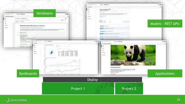 24 Project 1 Project 2 Deploy Notebooks Models - REST APIs Dashboards Applications