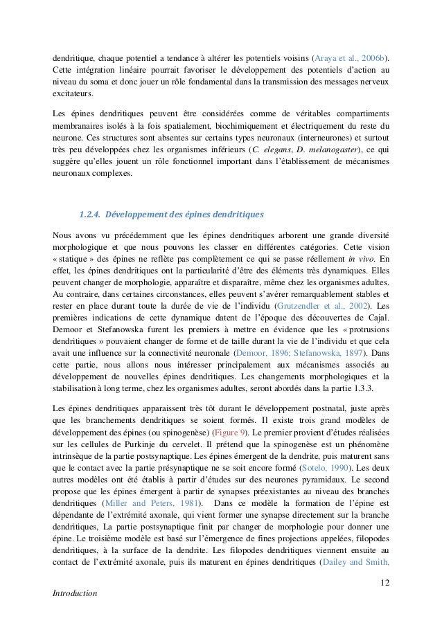 Dissertation troisieme