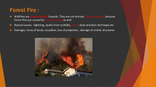 what causes natural forest fires
