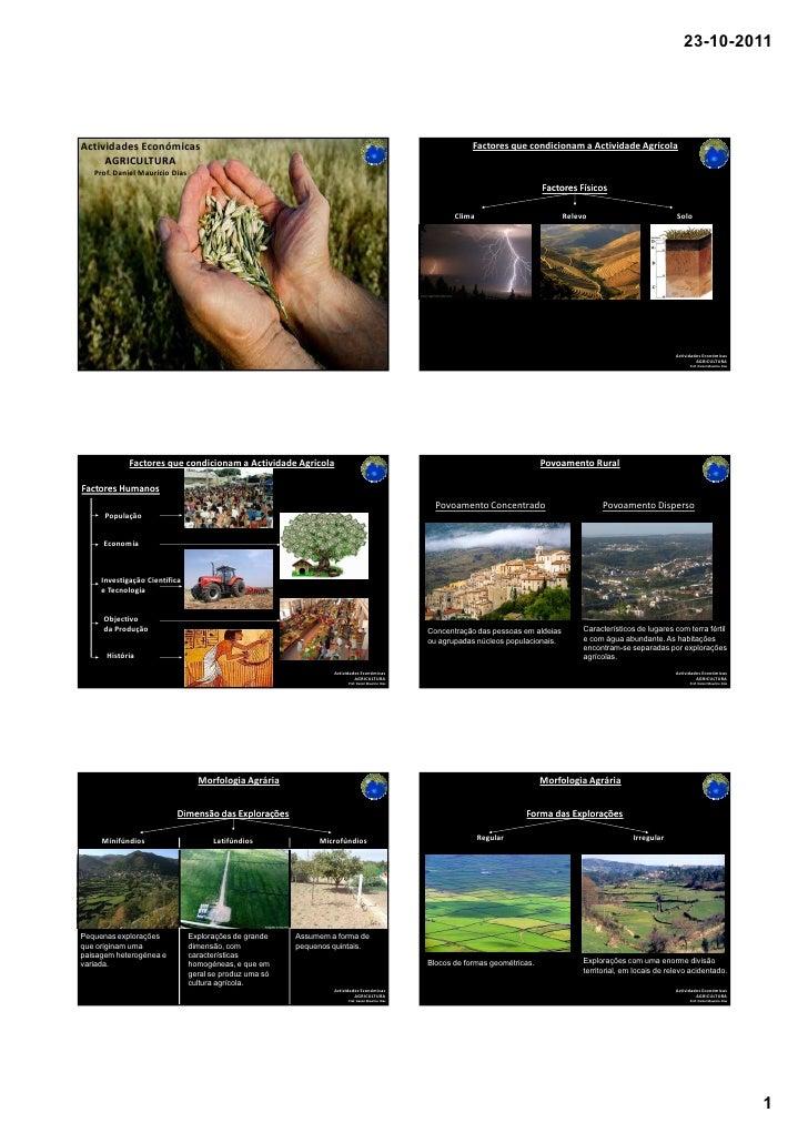 23-10-2011Actividades Económicas                                                                                          ...