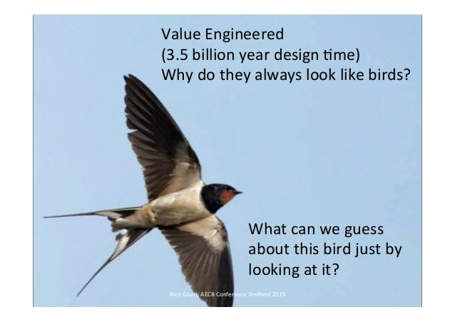 Value engineering what 39 s not to love for Value engineered