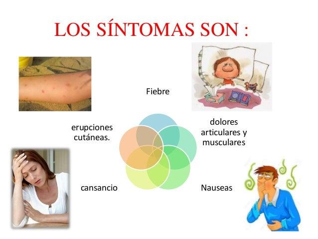 ZIKA Quienes padecen este virus tienen fiebre leve, sarpullido, dolor de cabeza, dolor en las articulaciones, dolor muscul...