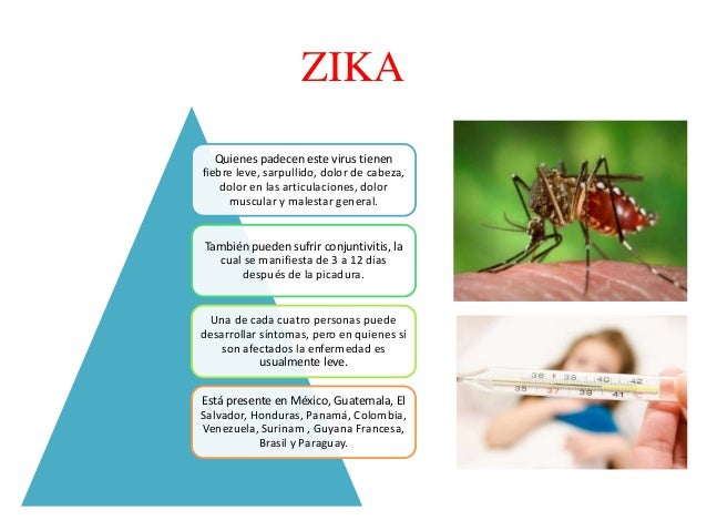 dengue, zika, chicungunya