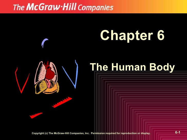 Chapter 6 The Human Body Copyright (c) The McGraw-Hill Companies, Inc.  Permission required for reproduction or display. 6-