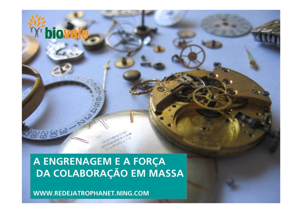 A ENGRENAGEM E A FORÇA DA COLABORAÇÃO EM MASSA WWW.REDEJATROPHANET.NING.COM                                1
