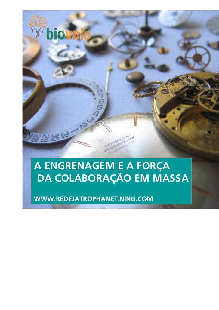 A ENGRENAGEM E A FORÇADA COLABORAÇÃO EM MASSAWWW.REDEJATROPHANET.NING.COM                               1