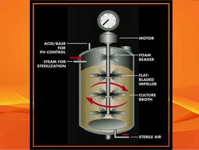 Aeration Amp Agitation In Fermentation