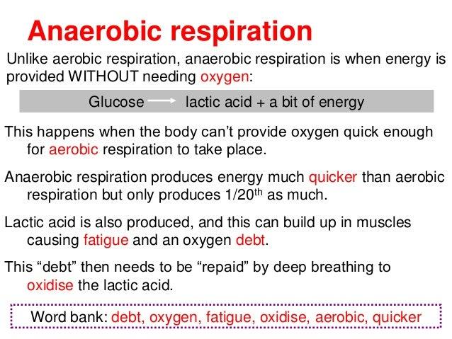 Aerobic & anaerobic respiration
