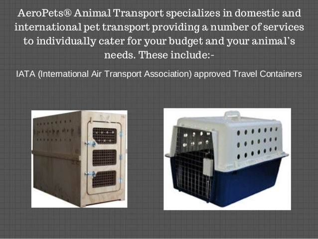 International Pet Transport And Relocation Services