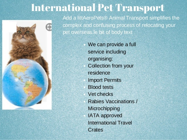 Aero Pets Transport And Relocation Services 1