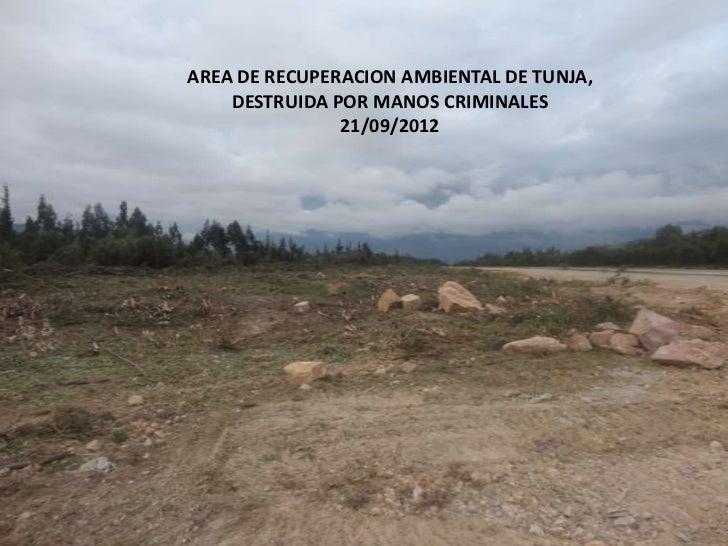 AREA DE RECUPERACION AMBIENTAL DE TUNJA,    DESTRUIDA POR MANOS CRIMINALES               21/09/2012