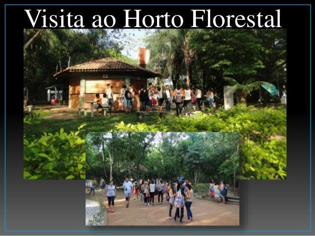 Visita ao Horto Florestal
