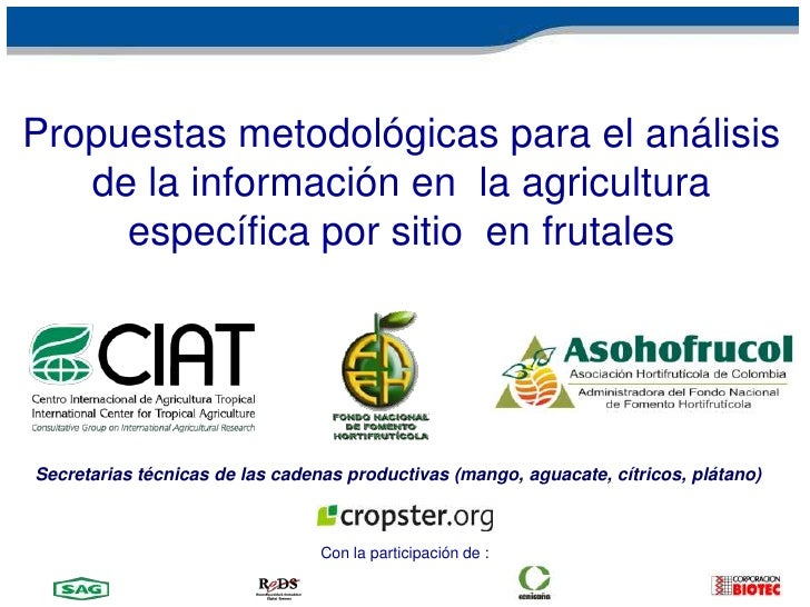 AESCE – Metodolgiás para el análisis de información<br />Secretarias técnicas de las cadenas productivas (mango,aguacate, ...