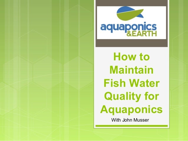 How toMaintainFish WaterQuality forAquaponicsWith John Musser