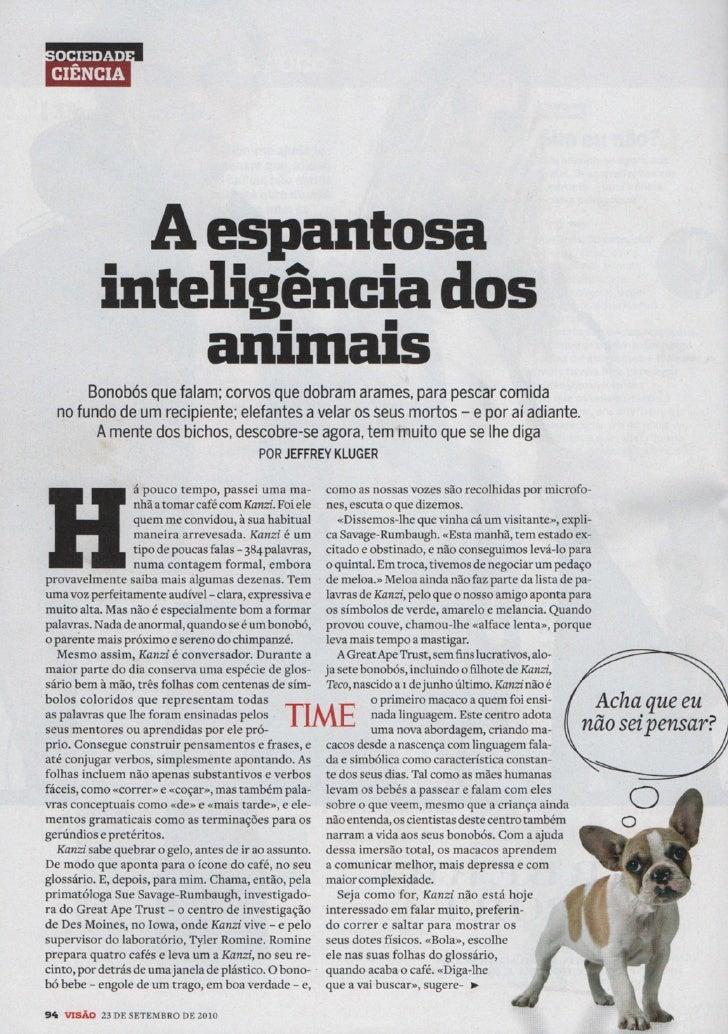A espantosa inteligência dos animais