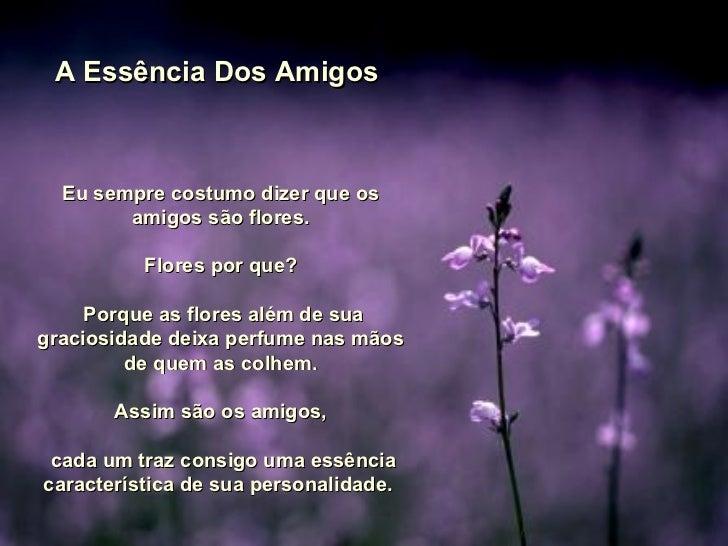 A Essência Dos Amigos  Eu sempre costumo dizer que os amigos são flores. Flores por que? Porque as flores além de sua grac...