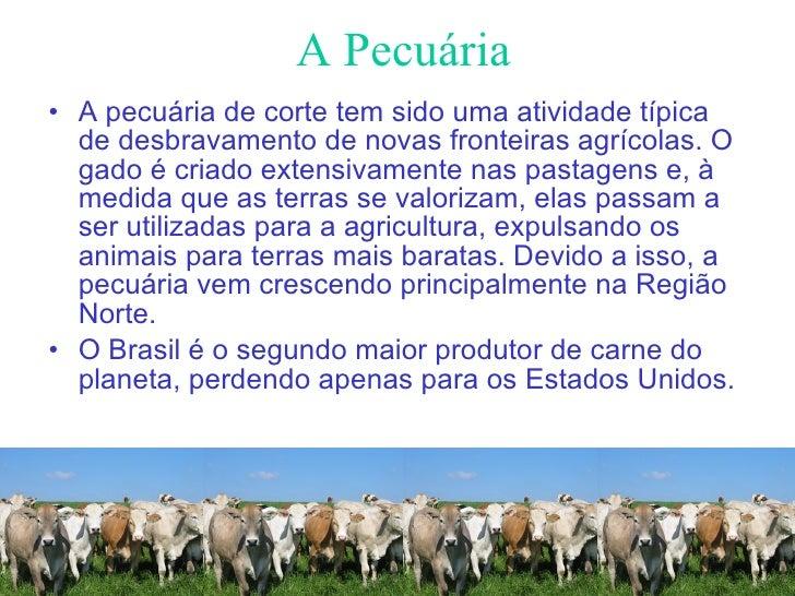 A Pecuária <ul><li>A pecuária de corte tem sido uma atividade típica de desbravamento de novas fronteiras agrícolas. O gad...
