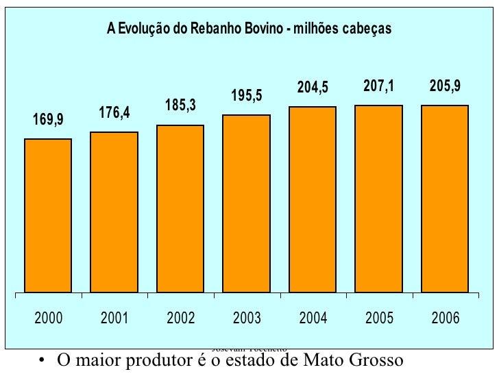 <ul><li>O maior produtor é o estado de Mato Grosso </li></ul>