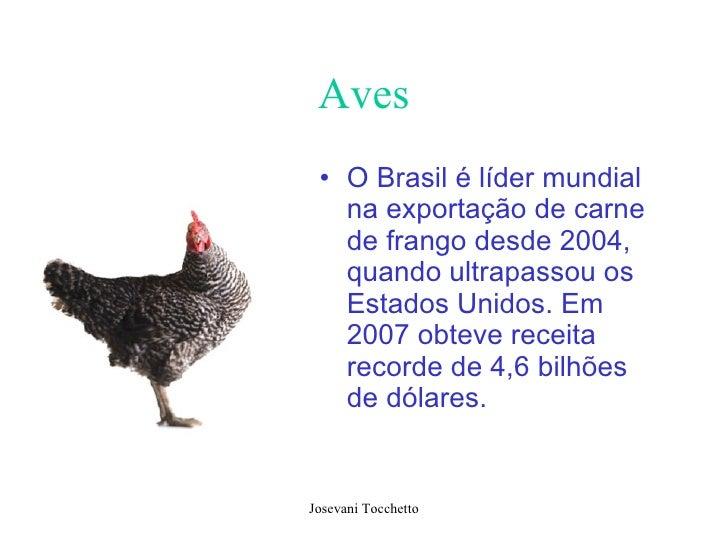 Aves <ul><li>O Brasil é líder mundial na exportação de carne de frango desde 2004, quando ultrapassou os Estados Unidos. E...