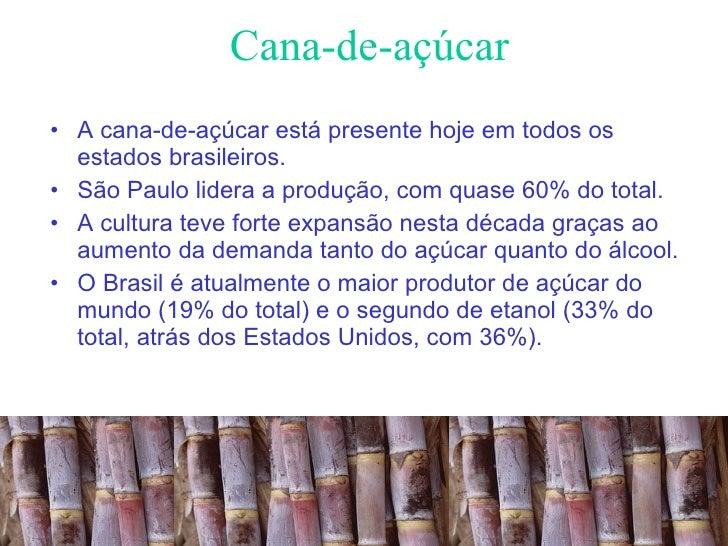 Cana-de-açúcar <ul><li>A cana-de-açúcar está presente hoje em todos os estados brasileiros.  </li></ul><ul><li>São Paulo l...