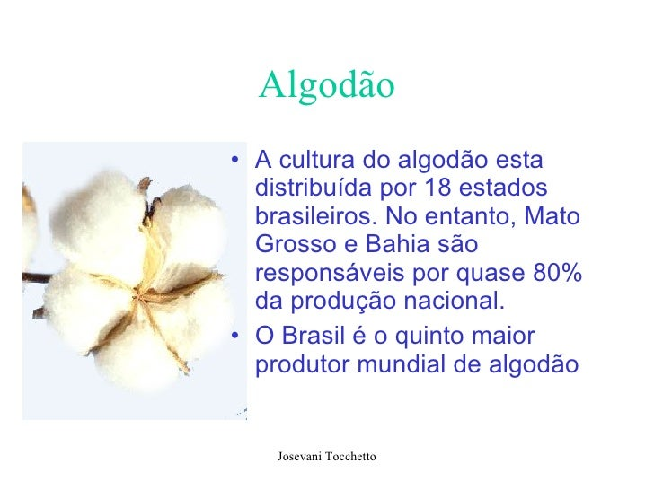 Algodão <ul><li>A cultura do algodão esta distribuída por 18 estados brasileiros. No entanto, Mato Grosso e Bahia são resp...
