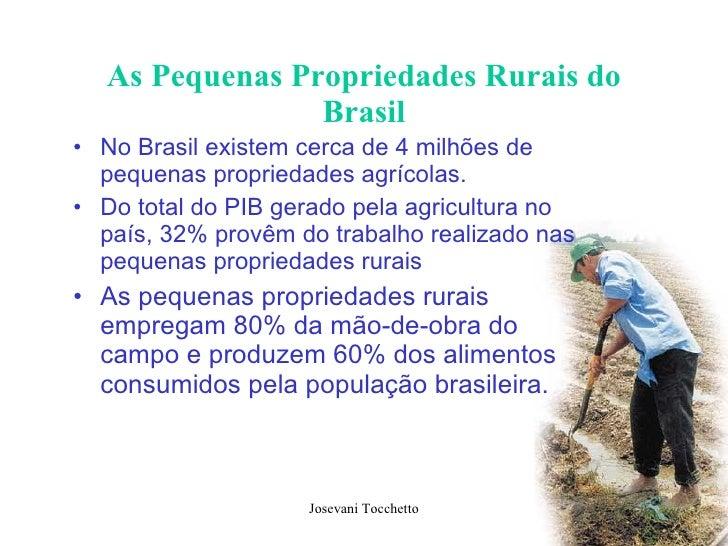 As Pequenas Propriedades Rurais do Brasil <ul><li>No Brasil existem cerca de 4 milhões de pequenas propriedades agrícolas....