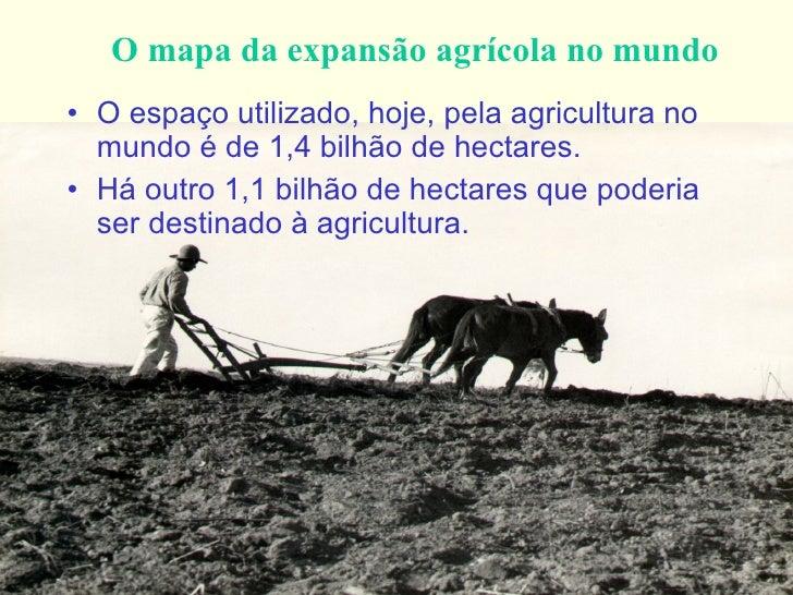 O mapa da expansão agrícola no mundo <ul><li>O espaço utilizado, hoje, pela agricultura no mundo é de 1,4 bilhão de hectar...