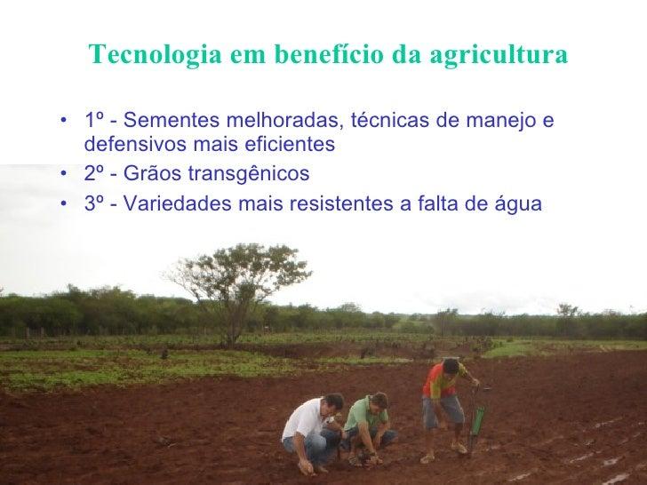 Tecnologia em benefício da agricultura <ul><li>1º - Sementes melhoradas, técnicas de manejo e defensivos mais eficientes <...