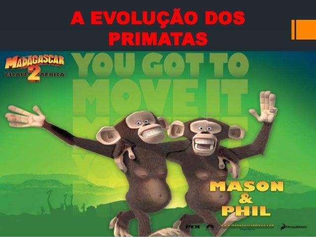 A EVOLUÇÃO DOS PRIMATAS