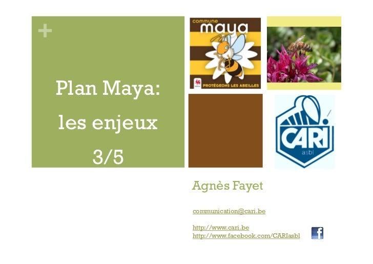 +    Plan Maya:    les enjeux       3/5                 Agnès Fayet                 communication@cari.be                 ...