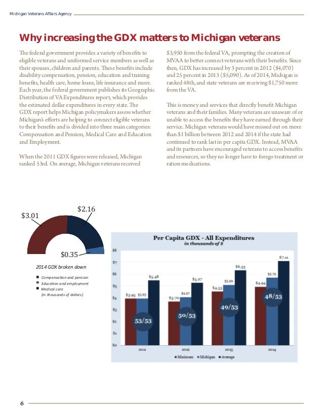 Annual Report MVAA 2015